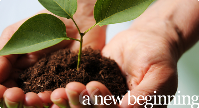 11 Life Changing Bible Verses About A New Beginning 1