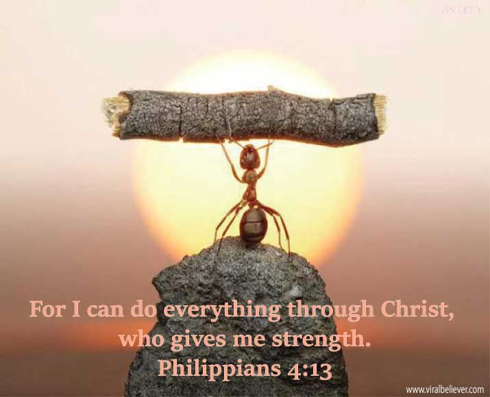 philippians-4-13 from 15 empowering Bible verses about strength that will enrich your day, week, or year. You will love this slideshow.